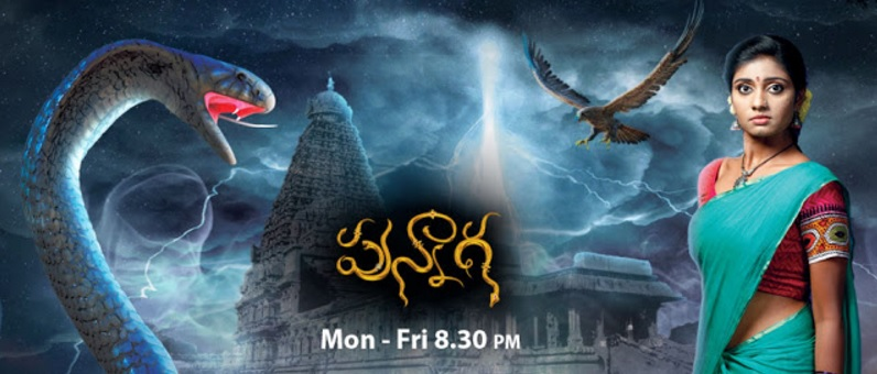 'Punnaga' Zee Teulgu Serial Wiki, Cast, Real Name, Story, Timings | droutinelife