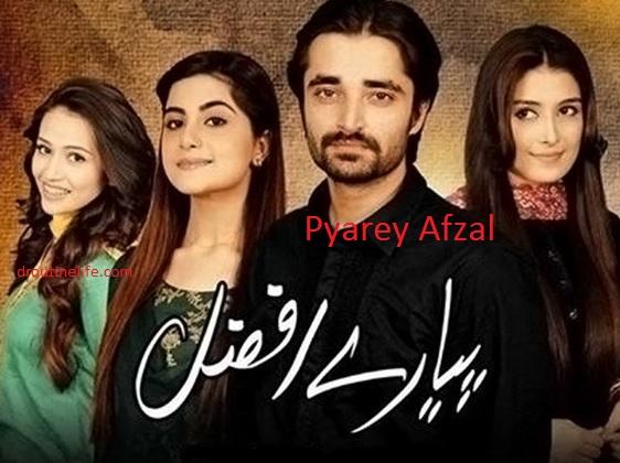 Pyaare Afzal Zindagi TV Show